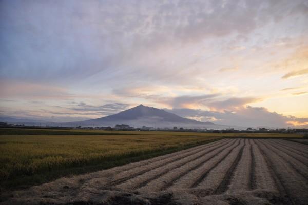이와키산과 벼 수확이 끝난 밭
