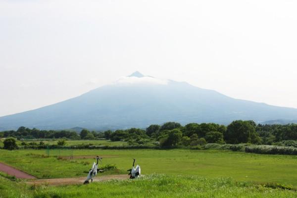 사쿠라 즈츠미공원에서 본 이와키산